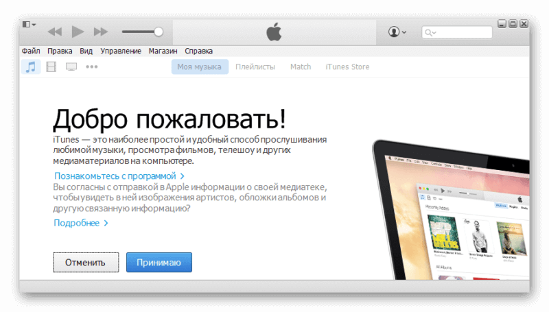 Вид iTunes для Windows XP